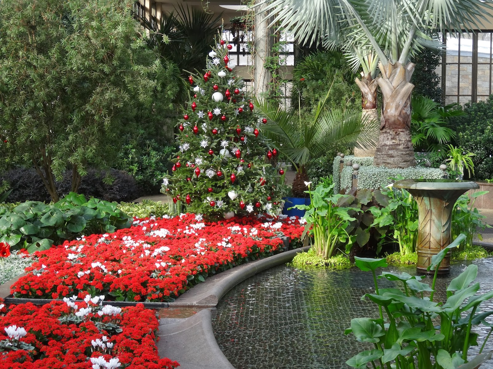 Love, Joy and Peas: Christmas at Longwood Gardens