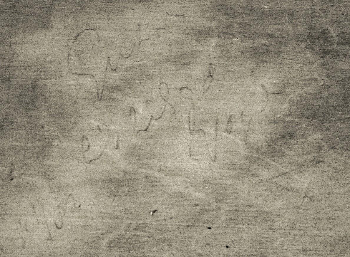 Vincent van Gogh Landschaft mit pflügendem Bauer Rückseite Infrarotlicht Schrift