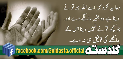 aqwal,aqwal e zareen,aqwal e zareen hazrat ali,aqwal hazrat ali,aqwal zareen,aqwal zareen facebook,aqwal zareen hazrat ali,aqwal zareen urdu,best urdu books,hazrat ali aqwal,pakistani urdu akhbar,urdu poetry allama iqbal, importance of prayer in islam, prayer in islam in english, prayer in islam for kids, daily prayer islam, how to pray in islam, prayer in islam for health, prayer in islam dua, prayer koran