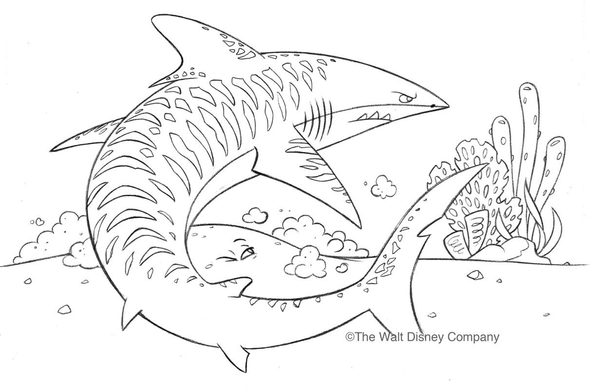 Uncategorized Tiger Shark Drawing ron cohee portfolio nemo pencils portfolio