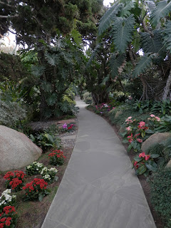 Pathway with Cyclamens, Photo by Kaliani Devinne, Copyright 2013