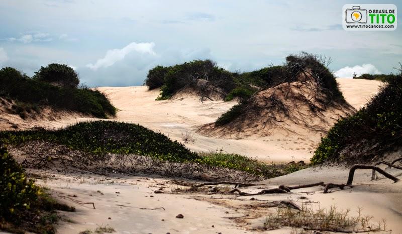 Dunas da praia da Princesa, na Ilha de Maiandeua (Algodoal), no Pará