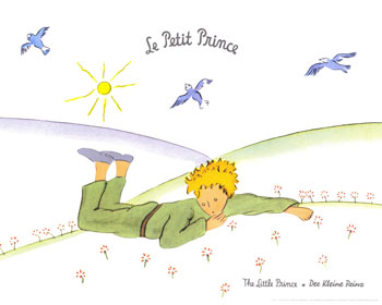 an analysis of the little prince The little prince happened to me in the form of this movie i didn't have a clue, a story so colossal hid all this time from me le petit prince, the original product of the extraordinary brain ofantoine de saint-exupery, was published in the year 1943 it has found numerous collaborations over .