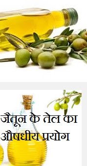 जैतून के तेल का औषधीय प्रयोग | Health Benefits of Olive Oil in Hindi