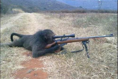 monkey Sniper path of vengeance