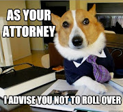 Best Of The Lawyer Dog Meme