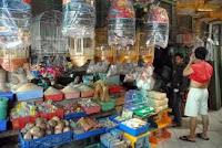 Pasar Pramuka Jakarta Pusat Jual Beli Burung