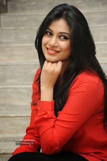 Actress-Zara-Stills-at-Bhai-Triple-Platinum-Disc