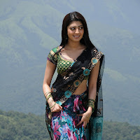 Cute pranitha in designer saree
