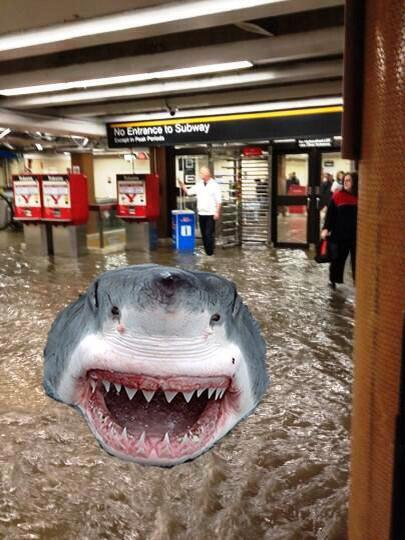 THE SUBWAYS ARE OUT AND FLOODED WITH SHARKS?!