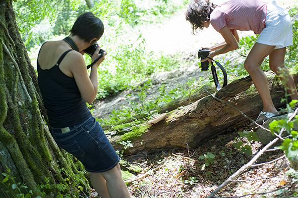 Photographier les sous bois dans le Vercors