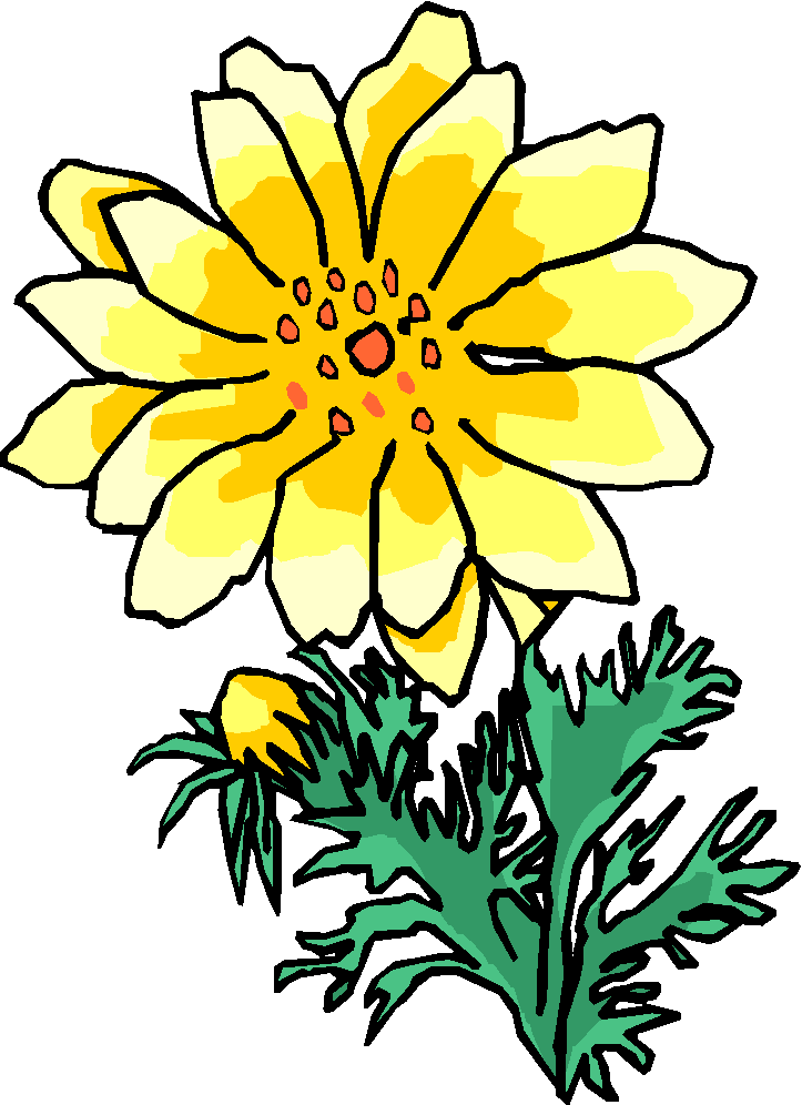 Big Yellow Flower Clipart