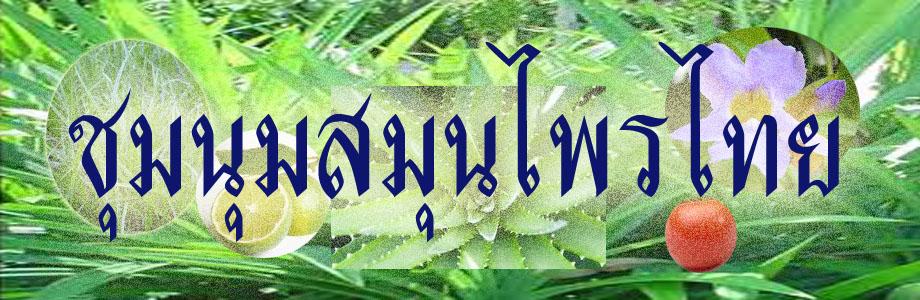 ชุมนุมสมุนไพรไทย