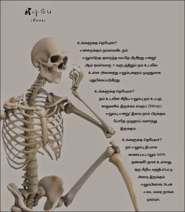 Venkat i compose music for eyes human body facts in tamil human bone fact in tamil urtaz Image collections