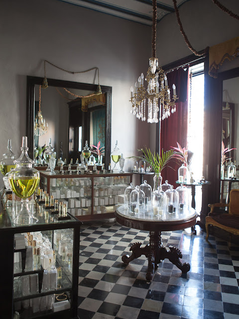 Rydeng s blog coqui coqui hotel in m rida mexico for Design hotel yucatan