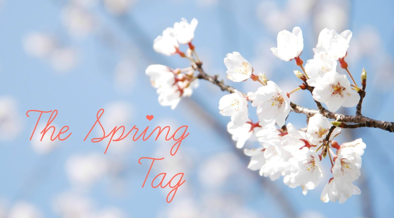 The Spring Tag | VanityFairest-x
