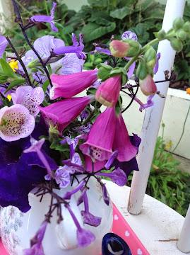 Summer blooms