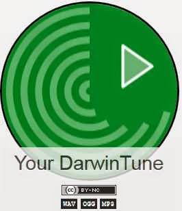 http://game.darwintunes.org/REST/population/1/individual/573a5f10/audio.mp3