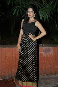 Pavani glamorous photos gallery-thumbnail-4