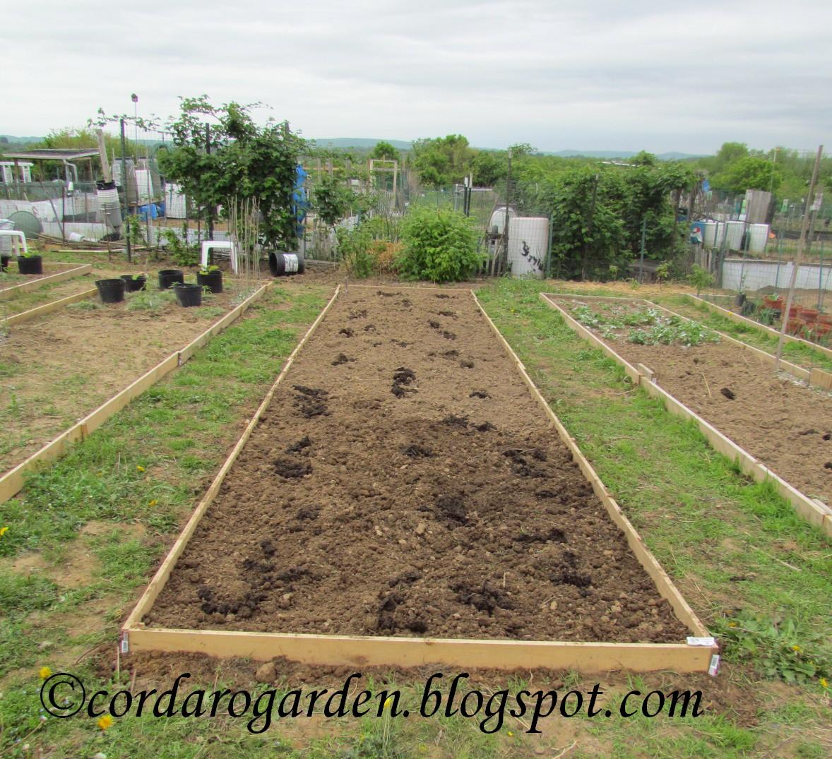 The Gardener of Eden: The Plots on May 13