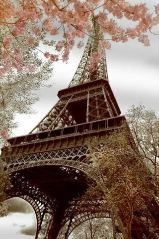 Spring In Paris France