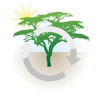eko system