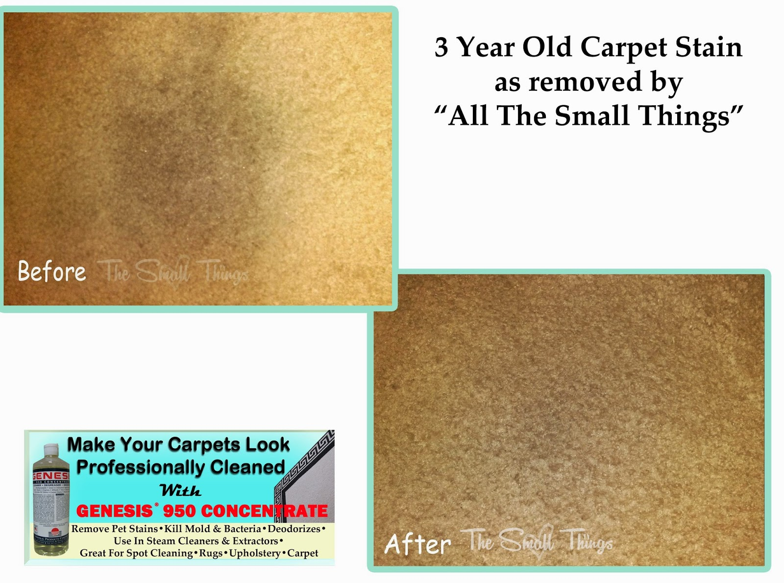 Clean Old Carpet Stains