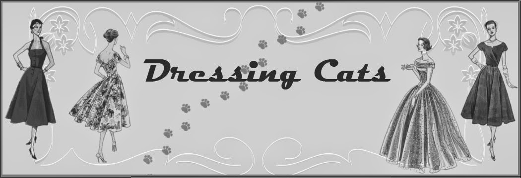 Dressing Cats
