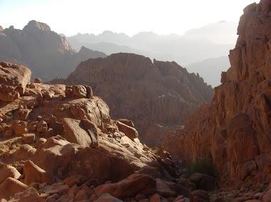 Mt Sinai vista