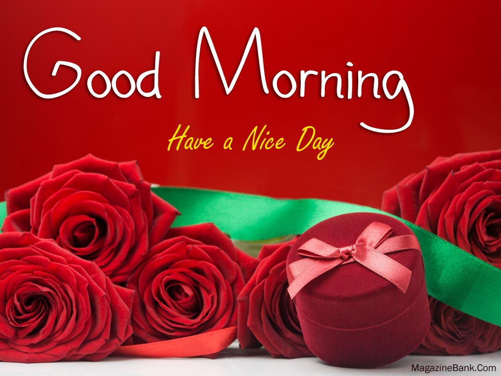 Good Morning Quotes Pics Download :