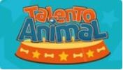Talento Animal TV Tribuna