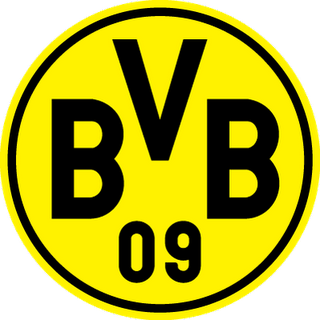 Panoramo Borussia Dortmund, estrutura, ídolos, torcida, títulos
