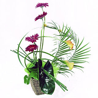 Best Modern Flower Arrangements For Funeral