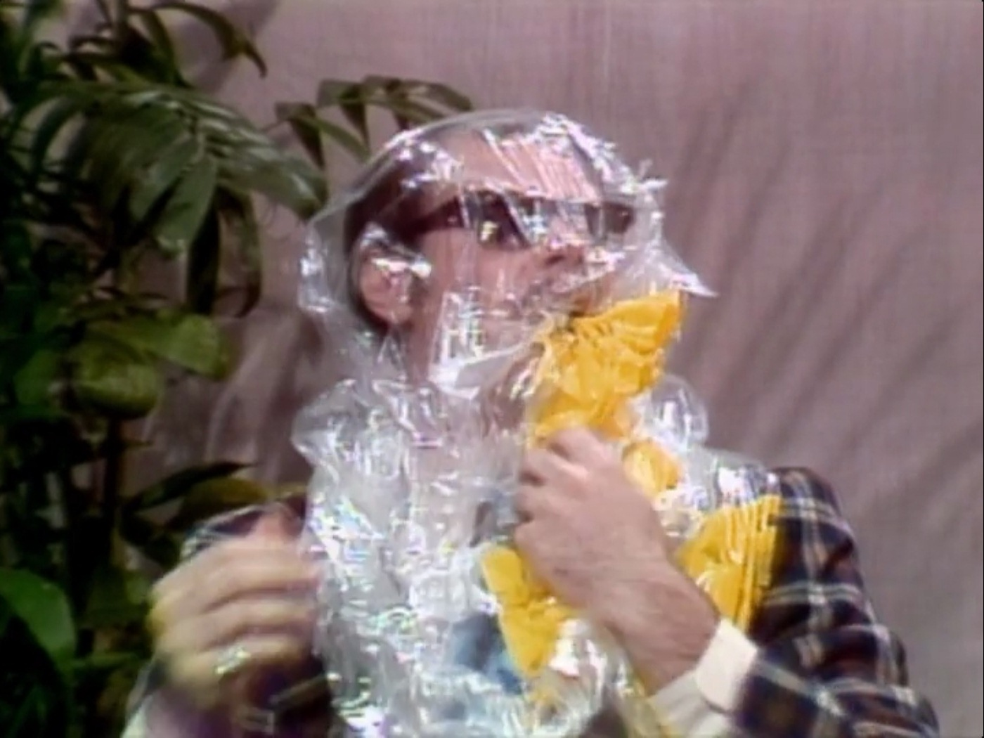 52 Best SNL images | Saturday night live, Snl, Celebrities