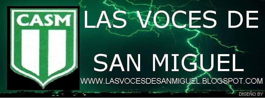 LAS VOCES DE SAN MIGUEL