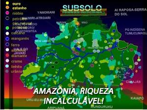 Por que estão querendo nossa amazônia?