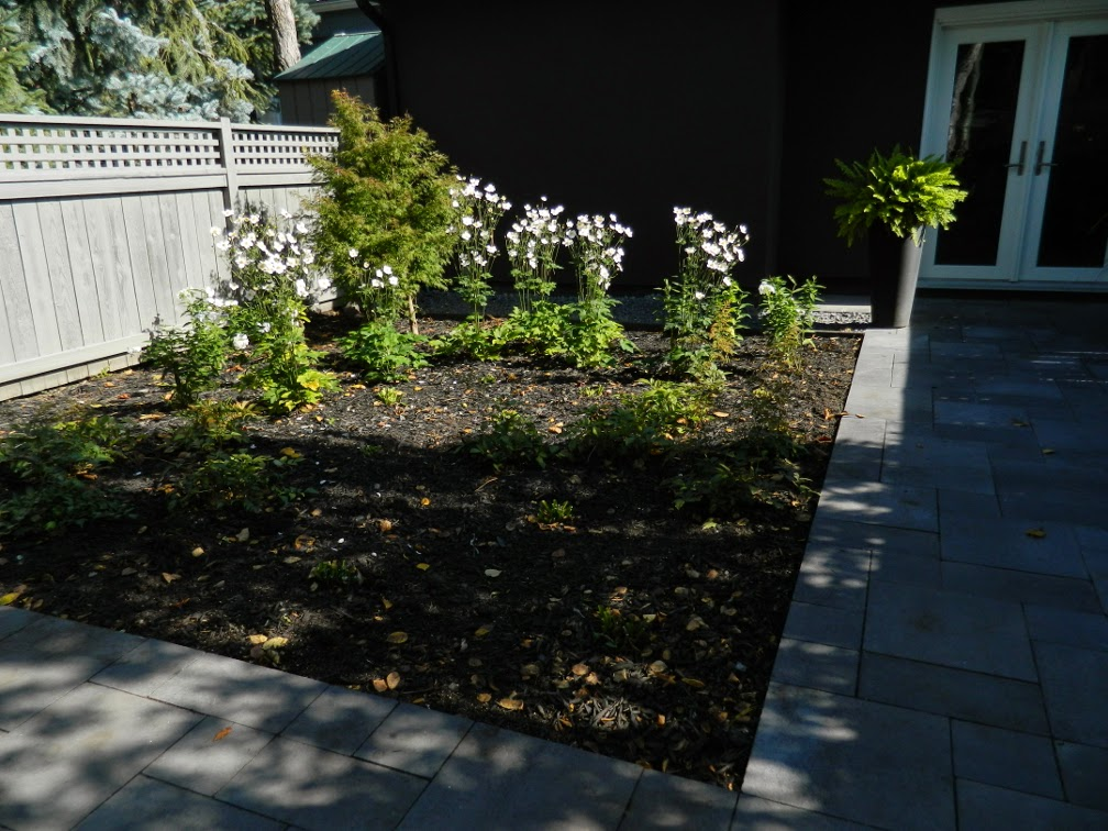 the danforth Toronto garden design after autumn by Paul Jung Gardening Services
