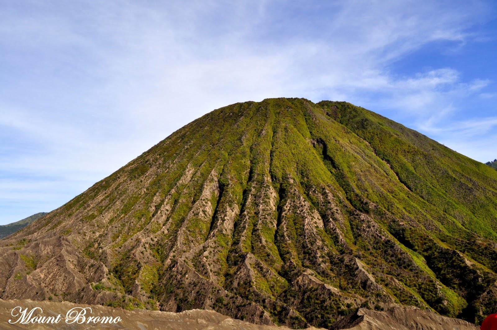Probolinggo Indonesia  City new picture : Never Give Up!: Mount Bromo, East Java, Probolinggo, Indonesia