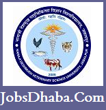 Nanaji Deshmukh Veterinary Science University, MPPCVV Recruitment, JobsDhaba, Sarkari naukri