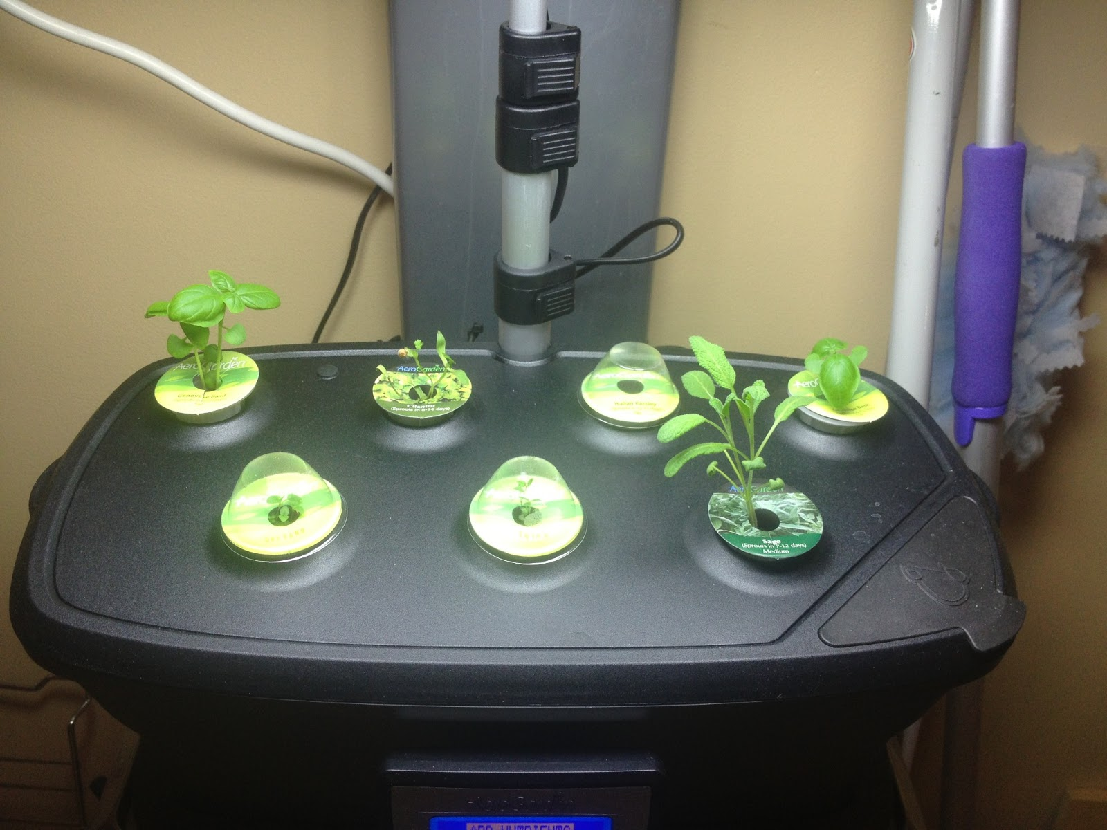 First nutrients added also why isn 39 t the airstone in the for Indoor gardening nutrients