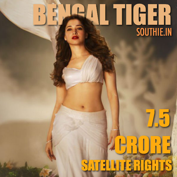 Bengal Tiger Satellite Rights 7.5 crore. Ravi Teja, Smapath Nandi movie goes for a whooping sum as the heroes Tamanna and Raashi Khanna give a ravishing glamour show.