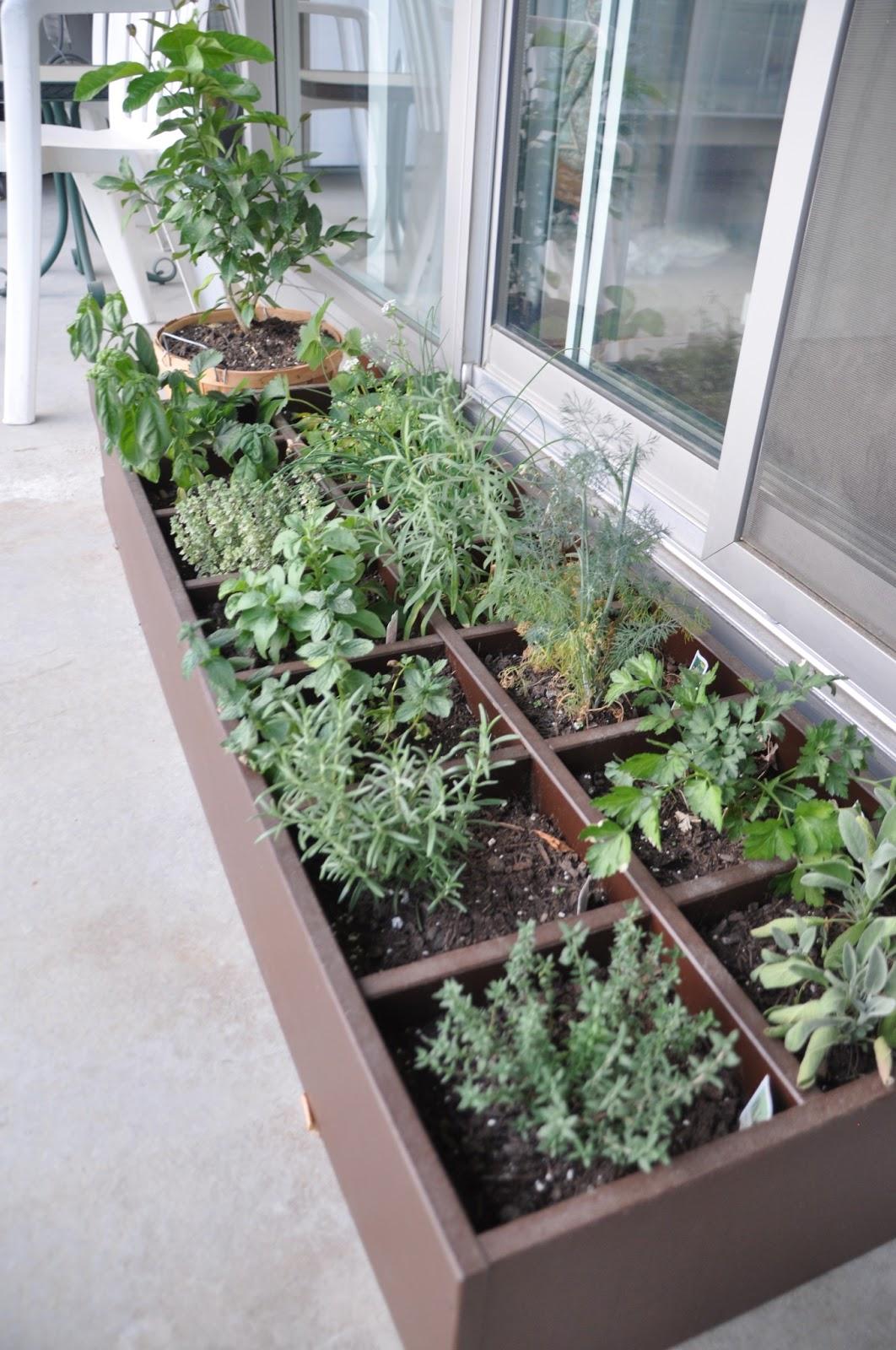 Sew Lah Tea Dough Diy Cd Rack Turned Herb Garden