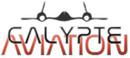 http://calypteaviation.com/2014/10/briefing-gdzie-szukac-map-i-procedur-przed-lotem/