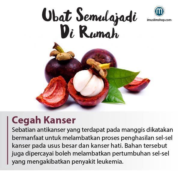 buah manggis sebagai obat semulajadi