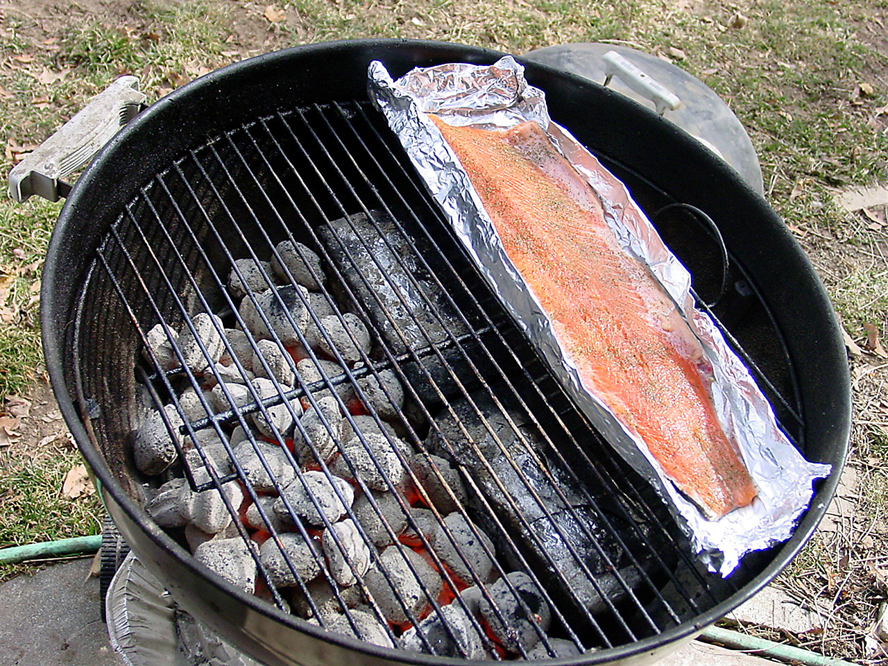 The Real Leopardstripes: Hot smoked salmon, Shioyaki style