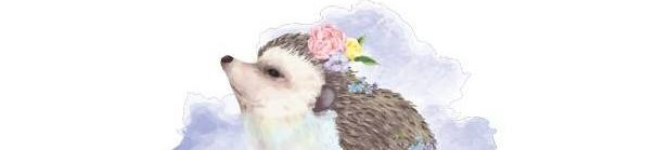 Hedgehog Valley News