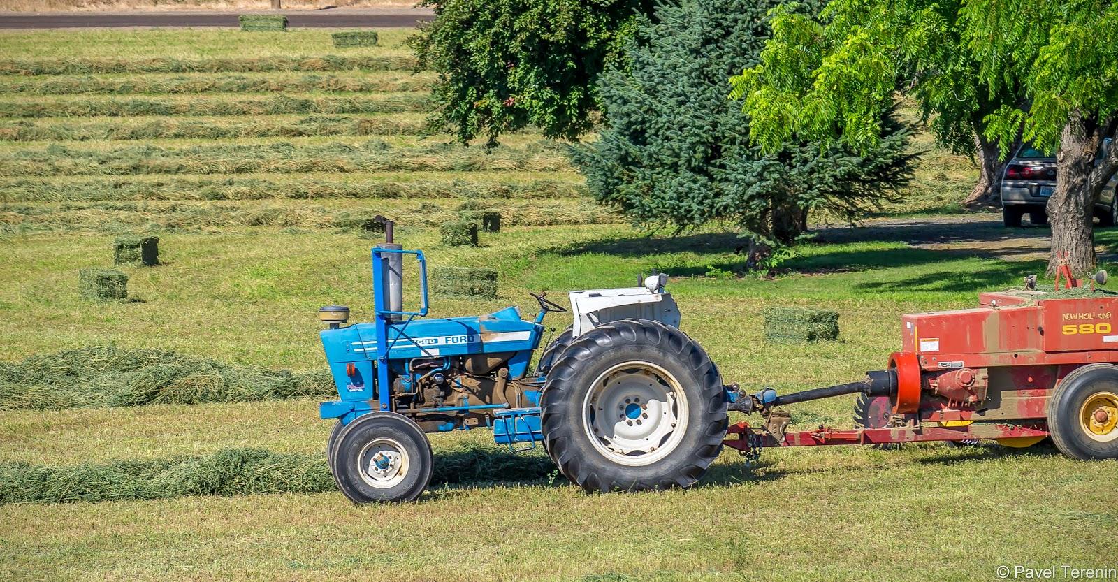Местные тракторы, в принципе, мало чем отличаются от белорусских. Хотя эксплуатируют их аккуратнее и содержат в чистоте.
