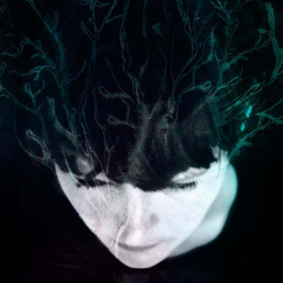Hanne Kolstø - While We Still Have Light