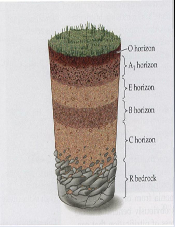 Soil Layers for Pinterest