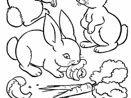 Baby Farm Animal Coloring Pages Printable